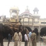 Touted as Abhimanyu's alternative, Gopi carries wooden howdah